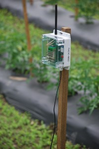 IAS RF90 Monitors Tomatoes